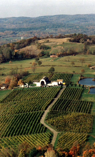 Millbrook Winery