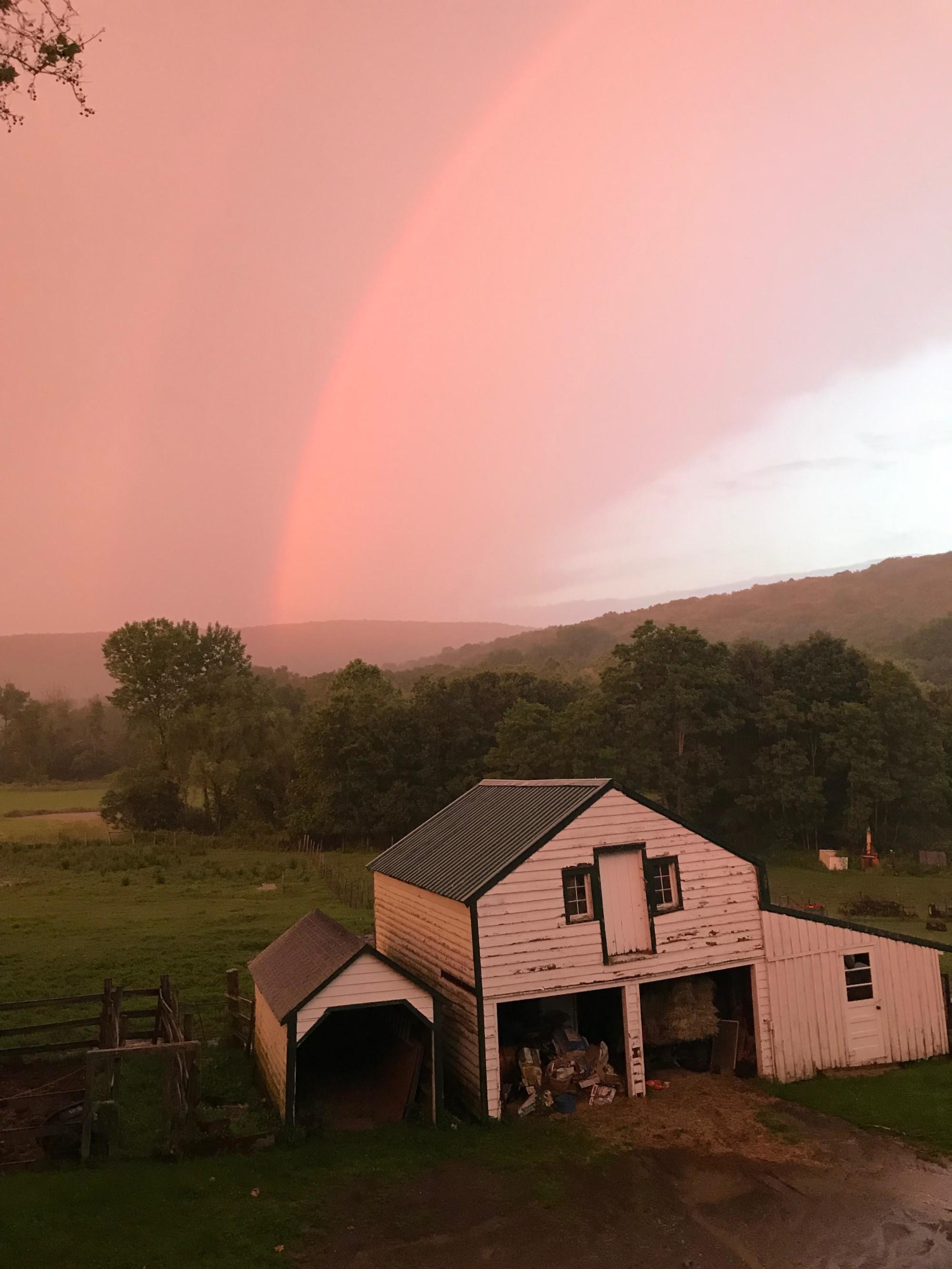 Big Farm Rainbow