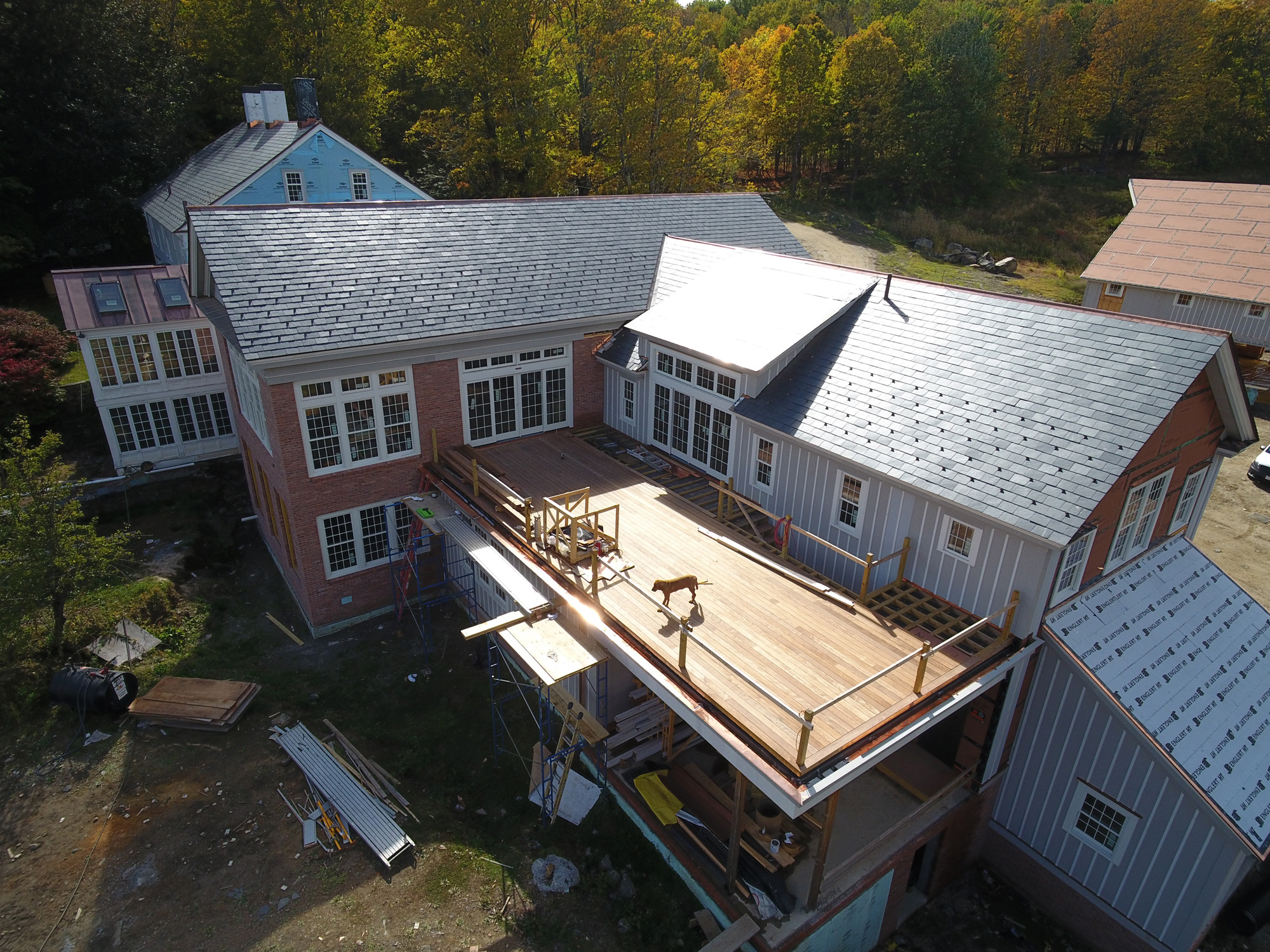 Under Construction with Dog in Massachusetts