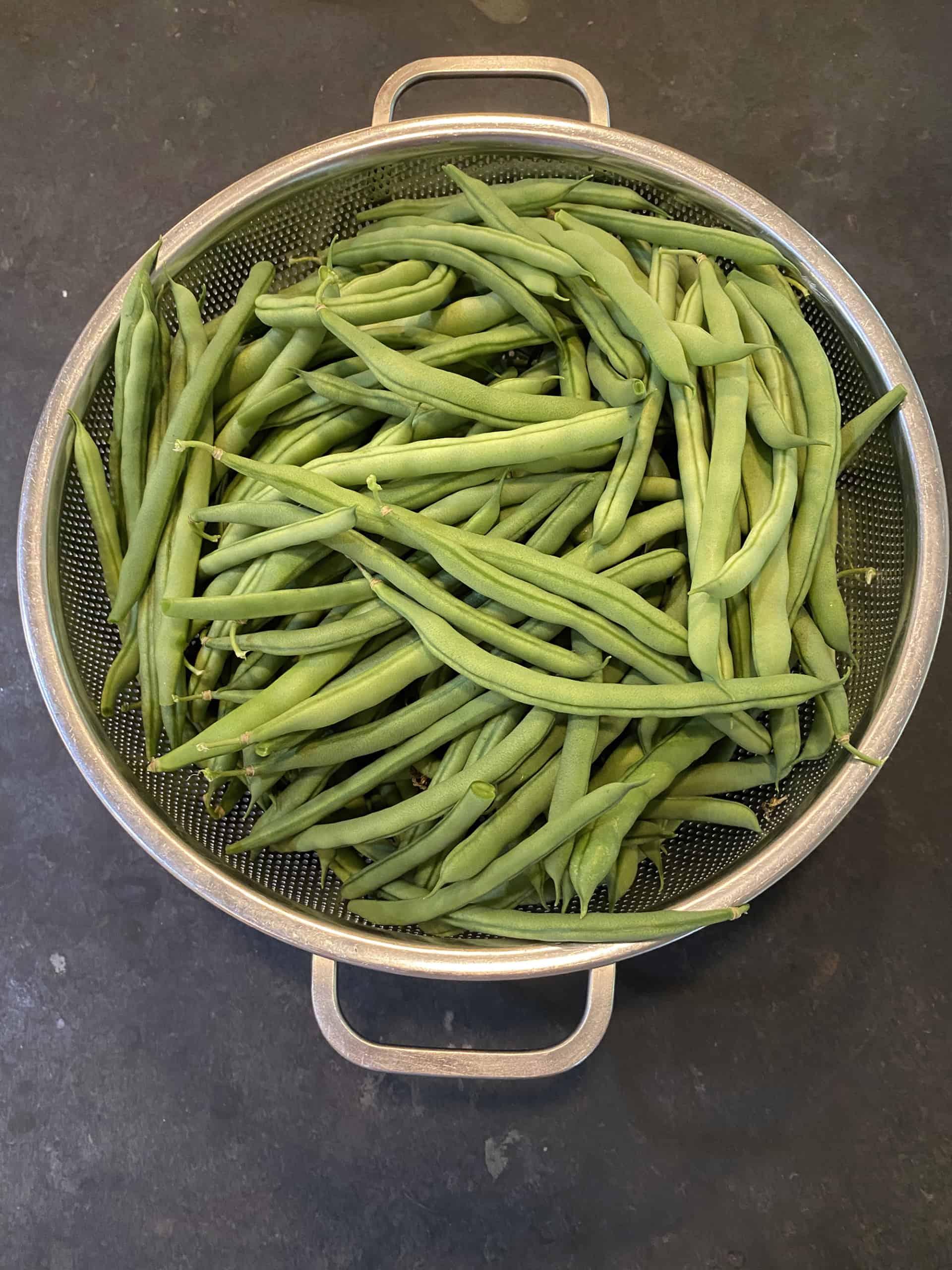 Colander Full of Beans